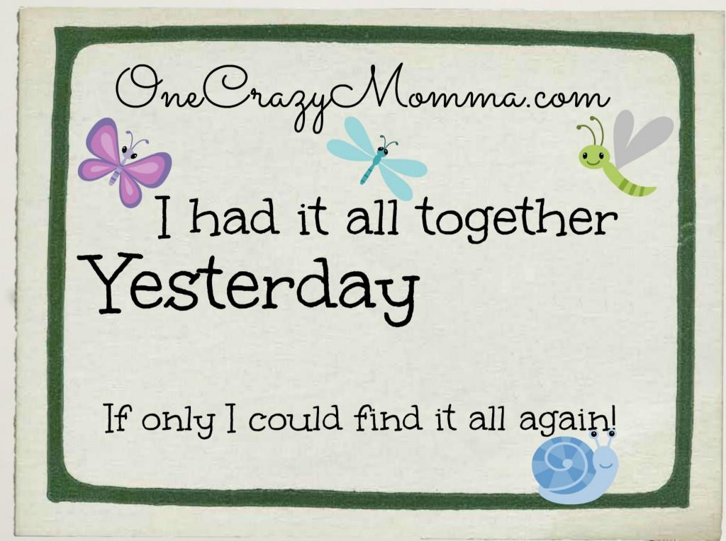 One Crazy Momma